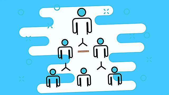 Qual è la differenza tra gestione burocratica e scientifica?