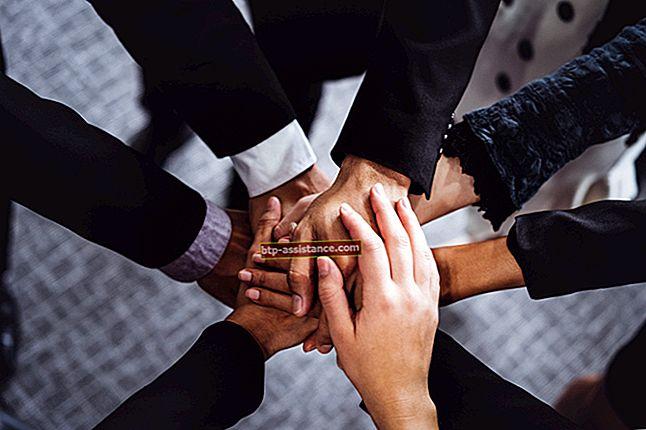 Una LLC può tenere una partnership?